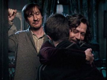 Remus Lupin, Sirius Black y Harry Potter