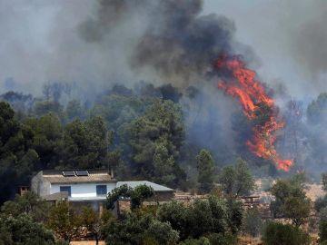 Incendio forestal en Tarragona