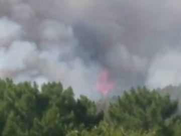 Más de 30 hectáreas afectadas por un incendio forestal en Ávila
