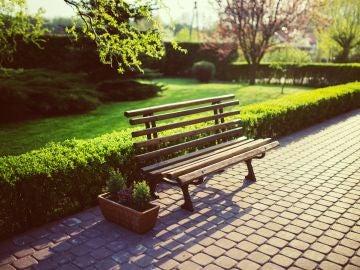 Imagen de archivo en un parque