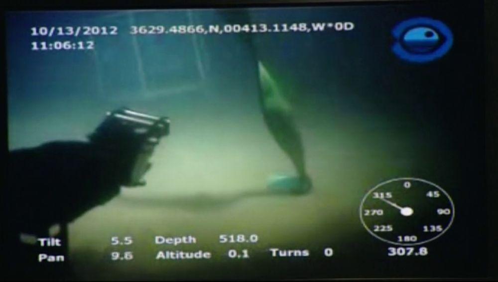 Un calamar gigante ataca a una cámara a 500 metros de profundidad en la isla de El Hierro