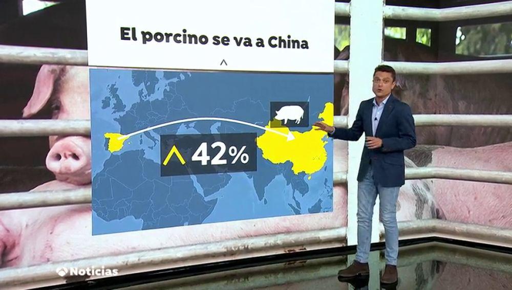 Se dispara la exportación de cerdo a China