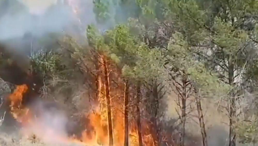 Incendio en El Picazo, Cuenca