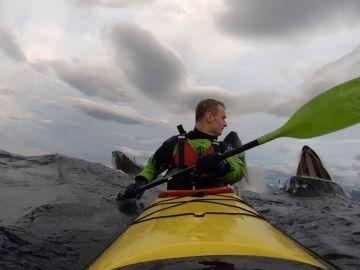 Ballenas sorprenden a kayakista