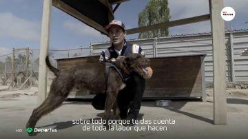 """Marc Márquez conoce la historia del perro bautizado con su nombre: """"El más rápido del refugio"""""""