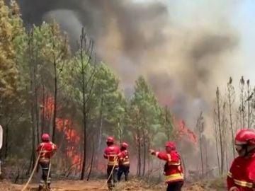 Incendio en Portugal