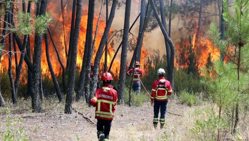 Bomberos combaten un incendio forestal en Casais de Sao Bento