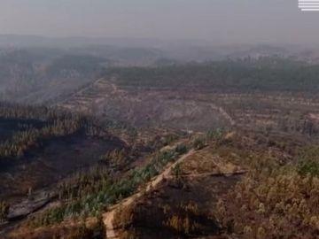 El incendio de Portugal, a vista de dron