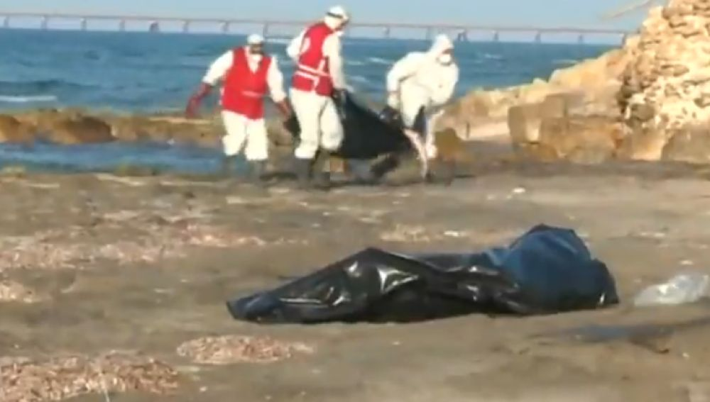 Recuperan 20 cuerpos sin vida en Libia