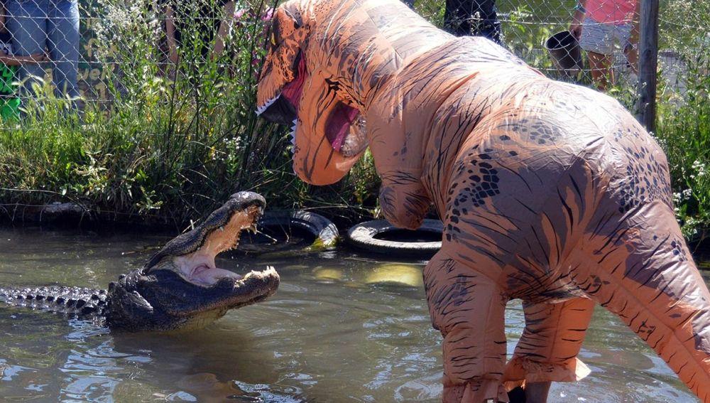 Dinosaurio se enfrenta a caimán