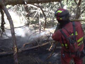 Baja a nivel 1 el incendio de La Granja y se trabaja para asegurar el perímetro