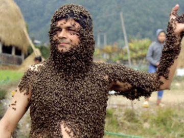 Cubierto de abejas