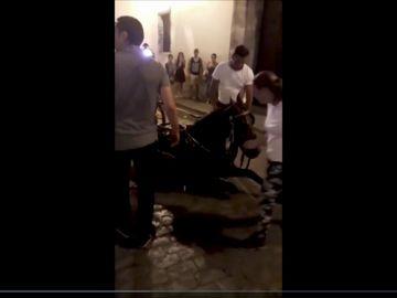 Otro caballo se desploma en Sevilla y los turistas recriminan al cochero el maltrato hacia el animal