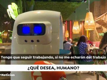 Cacahuete, el primer robot camarero en España