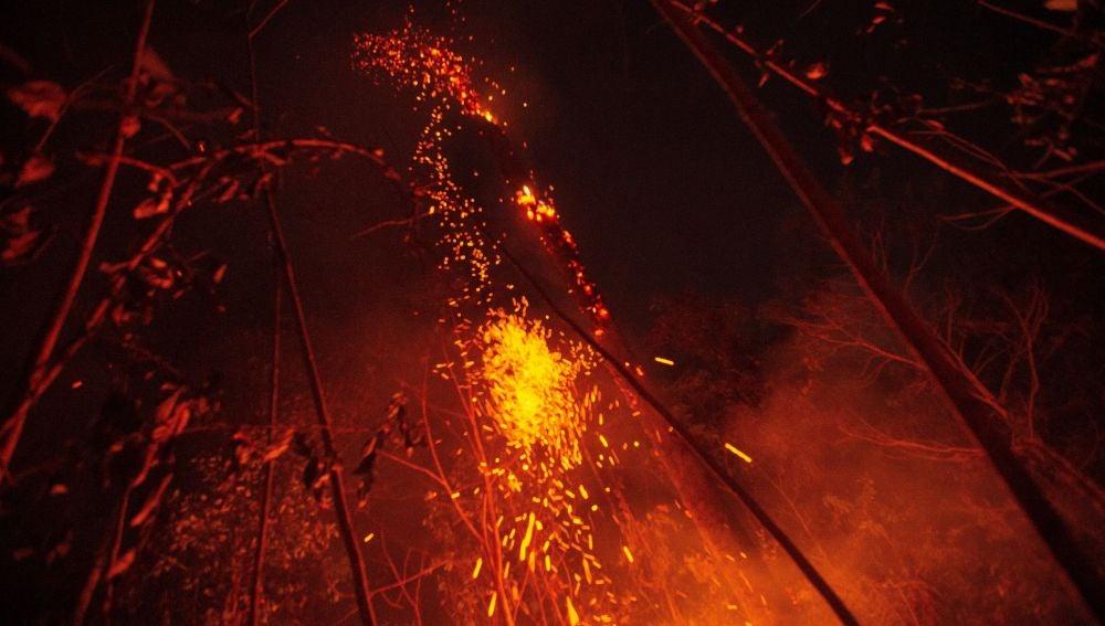 El Amazonas arde sin control