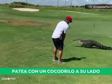 ¡Atención al 'swing'!: un golfista patea una pelota de golf, mientras un caimán hace aparición