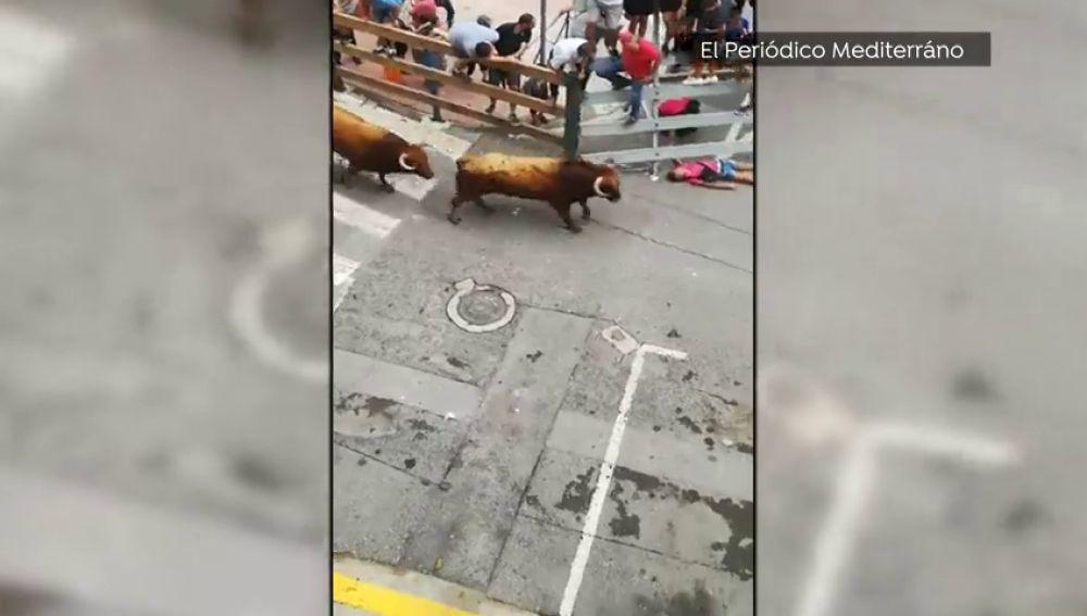 Un toro lanza al suelo a un corredor en los encierros de l'Alcora