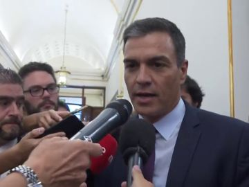 """Pedro Sánchez: """"Los ciudadanos dijeron que quieren un gobierno del Partido Socialista"""""""