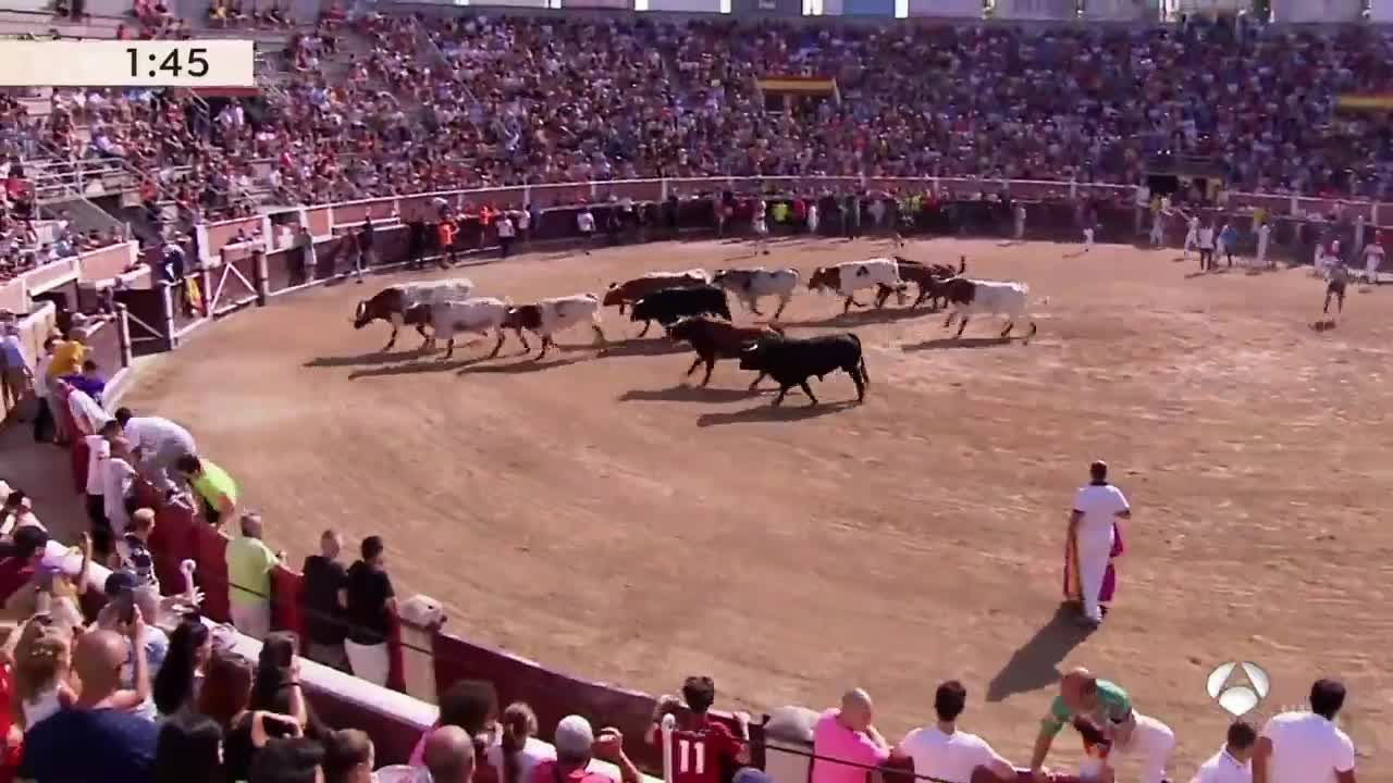 San Sebastián De Los Reyes 2019: Arranca El Concurso