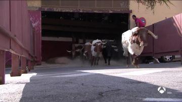 Cuarto encierro. Toros de la ganadería de El Estoque
