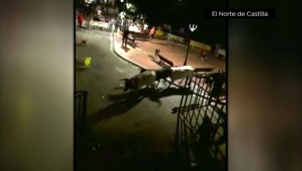 Tres toros desatan el pánico al salirse del recorrido en el encierro nocturno de Ataquines