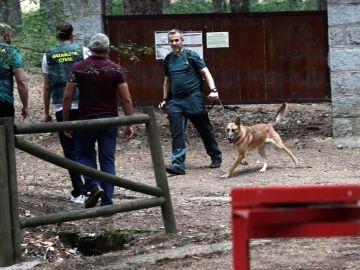 Los perros que buscan a Blanca Fernández Ochoa