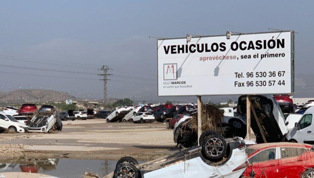 Daños en un concesionario de Orihuela