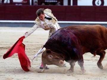 Javier Cortés, cornada en el pómulo y grave contusión en el globo ocular