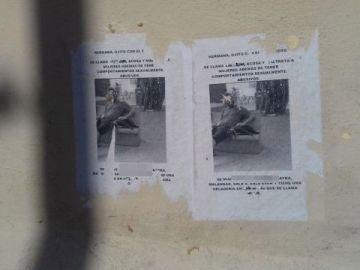 Carteles acusando a un hombre de abusos en Sevilla