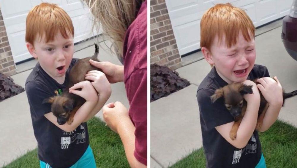 Niño recibe un perro