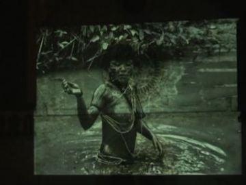Imágenes del amazonas