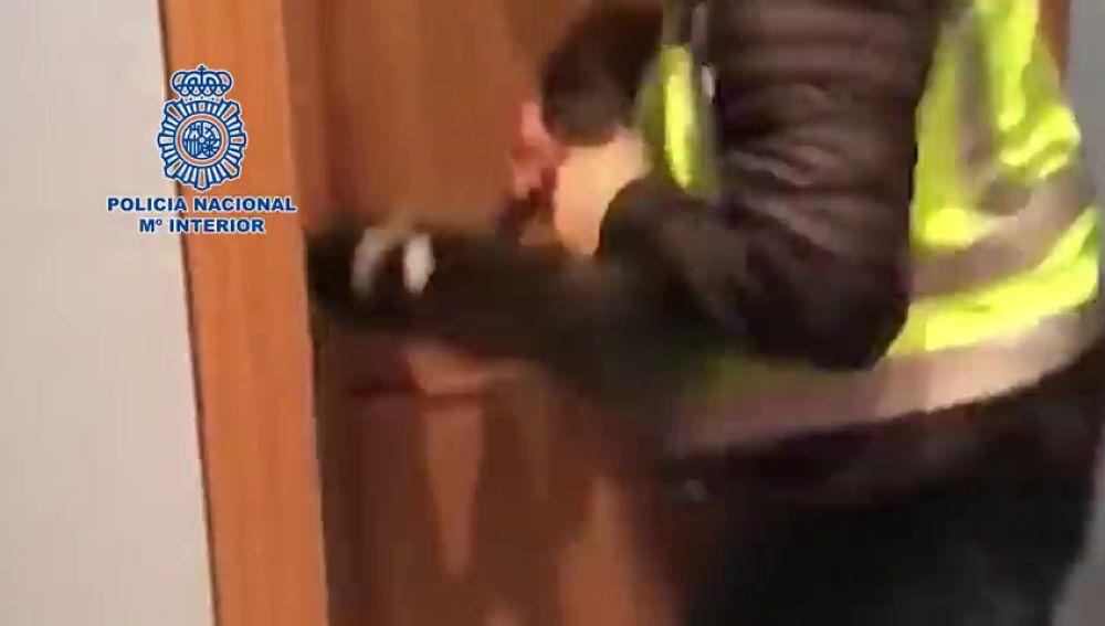 Once detenidos en una operación contra el dopaje deportivo en Madrid y Asturias