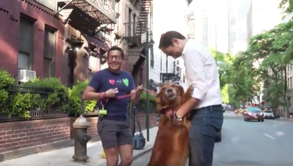 José Ángel Abad conoce a Louboutina, la perra más cariñosa del mundo