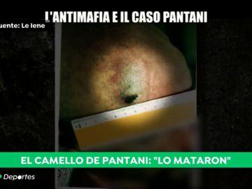 Las imágenes inéditas del cuerpo de Marco Pantani que demostrarían que fue asesinado