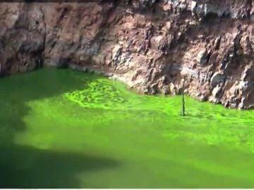 El río Tajo, invadido por las algas