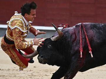 Gonzalo Caballero, cornada 'muy grave' que secciona la vena femoral