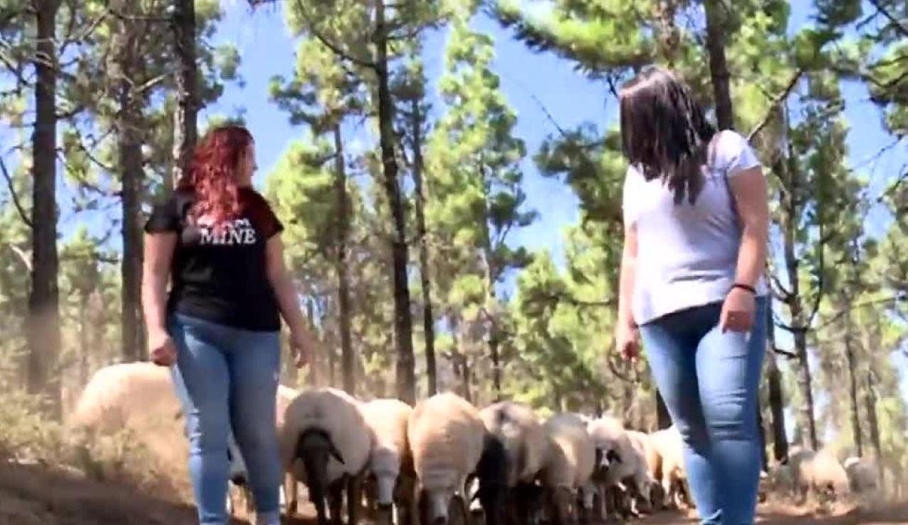 Las hermanas gemelas que se dedican a la ganadería
