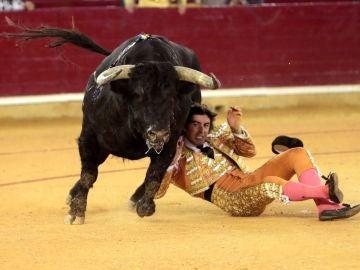 Miguel Ángel Perera, cogido por el sexto toro de la Feria del Pilar