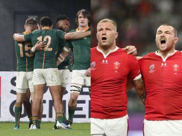 Gales y Sudafrica jugarán la segunda semifinal del Mundial de Rugby