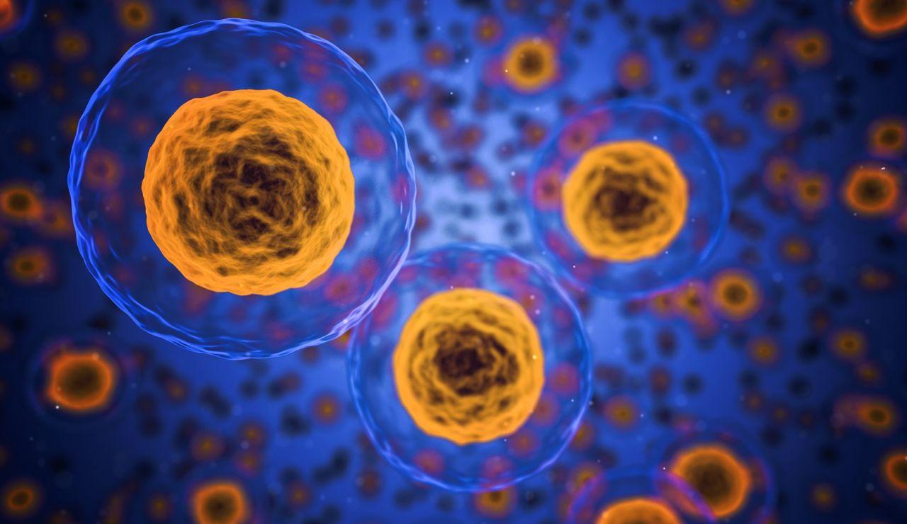 Primer tratamiento exitoso contra un gen que provoca varios tipos de cancer