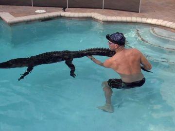 Peleando con un caimán