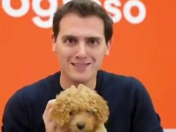 Elecciones Generales 2019: Albert Rivera con el perro Lucas