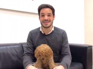 """La historia detrás de Lucas, el perro viral de Ciudadanos: """""""