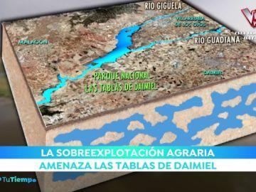 Las Tablas de Daimiel, un lugar único en el mundo sin agua