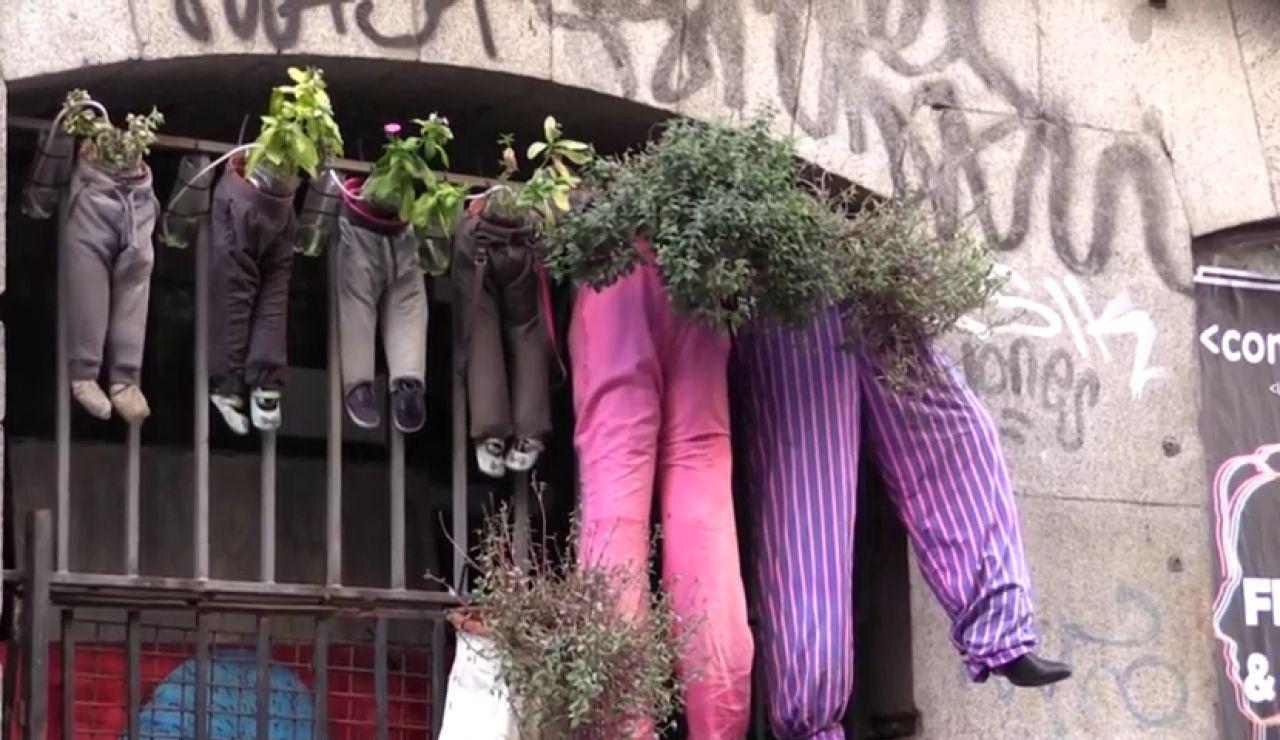 El hombre de los pantalones, un jubilado crea un jardín vertical en Malasaña