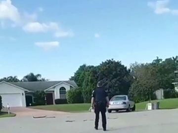 REEMPLAZO Rescatan a un perro que llevaba una hora conduciendo en círculos en Florida