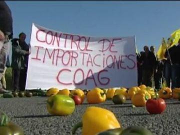 Los agricultores de Andalucía denuncian que los productos agrícolas procedentes de África no siempre pasan los controles