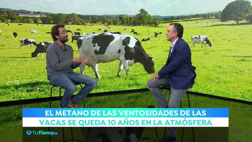 #TuTiempoXElClima a debate: ¿Si dejamos de comer carne, salvamos el planeta?
