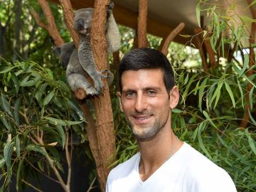 Djokovic, con un koala