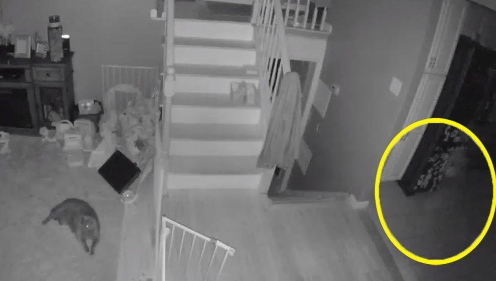 Fantasma aparece en la cámara de seguridad